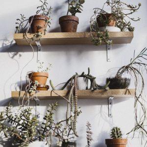 estanteria metalica de plantas